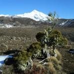 Mt Doom - Tongariro Crossing