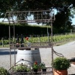 Martinborough Wine Tours