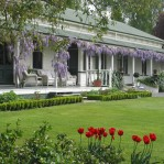 The Peppertree is a gracious historic house